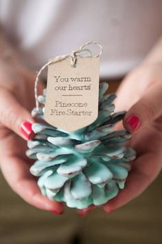 diy holiday gift ideas Pinecone Fire Starters diy                                                                                                                                                                                 More