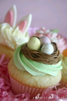 Easter Buttercream Nest Cupcakes ~ Cupcake decorating inspiration from Sweet Scarlet Holiday Treats, Holiday Recipes, Cupcake Recipes, Cupcake Cakes, Cupcake Flavors, Easter Cupcakes, Spring Cupcakes, Bunny Cupcakes, Holiday Cupcakes