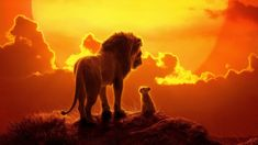 The official soundtrack for Disney's highly anticipated remake of The Lion King has arrived, with Elton John, Beyoncé and Donald Glover (aka Childish Gambino) among the featured artists. Lion King Remake, Watch The Lion King, Lion King 2, Lion King Movie, Donald Glover, Le Roi Lion 1, Le Roi Lion Film, Disney Quiz, Disney Trivia