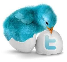 http://twitterfollowersmedia.com/buy-1000-twitter-followers/ Buy twitter followers  Individuals who utilization Twitter are more inclined to visit your site and have an enthusiasm toward your administration on the off chance that you have a lot of followers. Take a gander at the absolute most prevalent Twitter accounts and you'll see that they all have an extensive after of individuals. In a flash enhance your believability of your business.