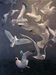 Elizabeth Mayville :: Gulls