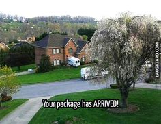 Your package has arrived #lol #laughtard #lmao #funnypics #funnypictures #humor