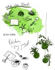 Kokedama+Hanging | have included here a mini Kokedama tutorial. You can find plenty ... Bonsai, Ikebana, String Garden, Orchids Garden, Little Gardens, Moss Garden, Hanging Planters, Air Plants, Dream Garden