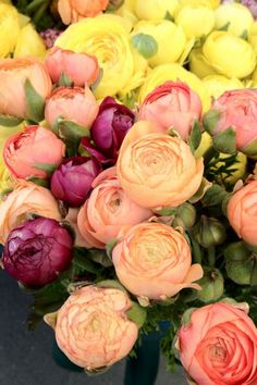 Ranunculus love them and they come in a lot of colors and look like little roses