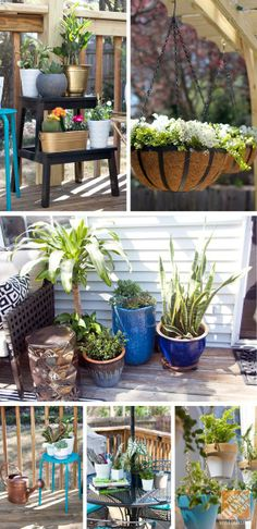 No patio is complete without lots of potted plants. Display them in hanging containers, small containers and large containers. Add one of each!