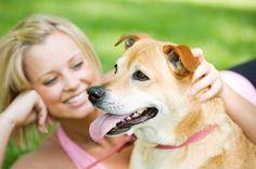 10 λόγοι που ο σκύλος είναι καλύτερος από τον άντρα