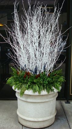 35 Festive Outdoor Holiday Planter Ideas To Decorate Your Front Porch For Christmas Winter White Branches With Evergreens Christmas Urns, Outdoor Christmas Decorations, Rustic Christmas, Winter Christmas, Christmas Home, Christmas Wreaths, Winter Porch, Contemporary Christmas Decorations, Table Decorations