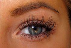 um legit the prettiest eyelashes ever. jealous.