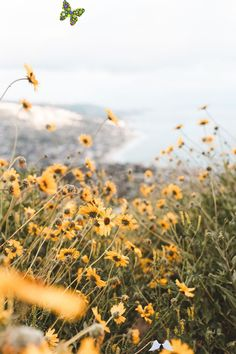 "sevindirik oldum sanki: Fotoğraf vvnnie: ""I love seeing the bloom every year // Instagram ""<br> Autumn Photography, Beauty Photography, Travel Photography, Swimsuits For Small Bust, Vsco, Yacht Week, Bloom, Lake Photos, Orange Aesthetic"
