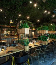 Faux plafond design vert, restaurant The Segev Kitchen Garden en Israël Decoration Restaurant, Deco Restaurant, Restaurant Lounge, Restaurant Concept, Restaurant Interior Design, Modern Restaurant, Restaurant Lighting, Restaurant Kitchen, Small Garden Restaurant