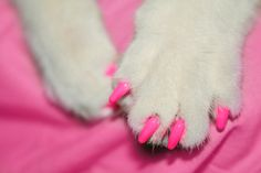 Pink claws cute for jade!!!