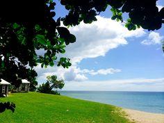 #Blue and #Green ... A beautiful combination! #Nevis #Caribbean #beach