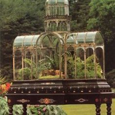 A Victorian fernery ..... so pretty ..... I've never seen one of these before.