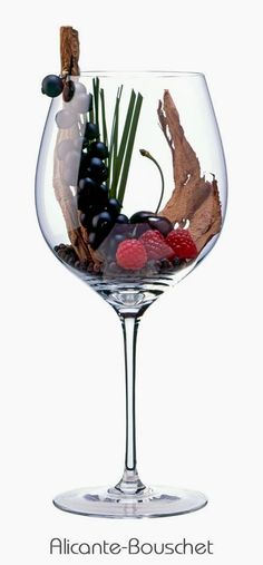 Alicante Bouschet or Alicante Henri Bouschet (red) | Aromas of grass, leather, black currant, cherry, pepper, raspberry, licorice | Languedoc, Provence and Cognac regions, France