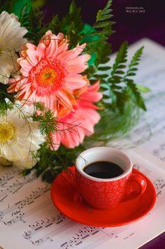 I Love Coffee, Coffee Break, Coffee Drinks, Coffee Cups, Love Wallpaper Download, Iphone Wallpaper Landscape, Self Watering, Diy Phone Case, Espresso Cups