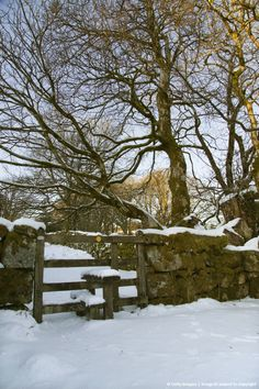 Image detail for -Footpath in snowy conditions, at Two Bridges, Dartmoor National Park, Devon, Great Britain.