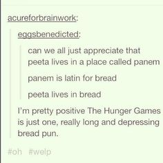 "And this, which summarizes everything: | 27 ""Hunger Games"" Puns You Can't Help But Laugh At"