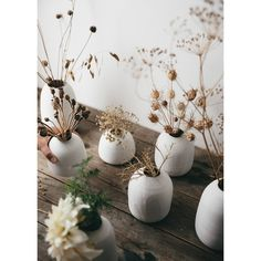 Medium Ceramic Paperwhite Vase perfect for displays of dry and fresh flowers, named after our favourite spring flowers and the joy they bring during the dark winter months. Each vase is beautifully un Fresh Flowers, Dried Flowers, Spring Flowers, Vase Of Flowers, Faux Flowers, Wabi Sabi, Deco Champetre, Deco Nature, Flower Names