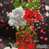 Rose Roses, Plants, Pink, Flora, Rose, Plant, Planting, Pink Roses