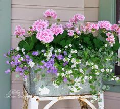 Pretty combination of geraniums and trailing flowers for a container.