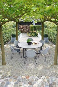 gravel garden w/ umbrella pruned trees Grind/ gravel