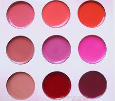 Review and Swatches of BH Cosmetics Shaaanxo Lipstick Palette.