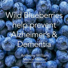 Wild Blueberries help prevent Alzheimer's & Dementia - All Diseases Health And Nutrition, Health And Wellness, Health Tips, Nutrition Tips, Health Vitamins, Health Foods, Natural Cures, Natural Healing, Natural Skin