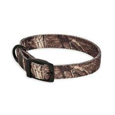 Petmate Mossy Oak Camo Dog Collar - Collars - Collars, Harnesses & Leashes - PetSmart