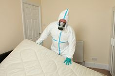 Bed Bugs, Free Quotes, Pest Control, App Store, Mattress, Action, London, Website, Iphone