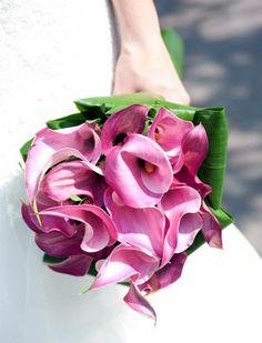 Ramo de novia con calas moradas Floral, Bloom, Rose, Flowers, Plants, Wedding, Google, Valentines Day Weddings, Tropical Wedding Bouquets