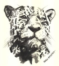 leopardo en acuarela