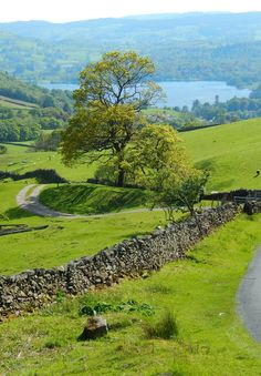"""Lake District, Cumbria, England, UK view of Windermere from """"The Struggles"""""""