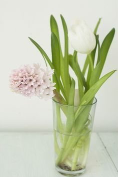 By choosing one color way and mixing florals (tulips and hyacinth here) we can create a luxe arrangement