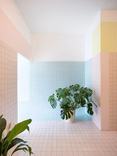 """This visual of flashes of colour behind closed eyes is translated into blocks of baby pink, blue and yellow, which the studio says help to create a transition between the outside world and the ethereal experience of """"floating naked in a highly salted water pod"""". Spa Interior, Interior Photo, Interior Design, Contemporary Architecture, Architecture Design, Retail Architecture, Architecture Interiors, Float Center, Float Spa"""