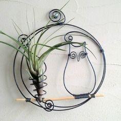 Tillandsia⚓ décoration aluminium hibou et fille de l ' air ⚓ cadre végétal ⚓ déco maison
