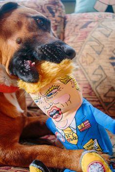 Presidential Parody Pet Toys from FUZZU via @dogmilk
