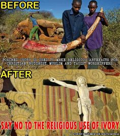 Religious use of ivory #animals #poaching #religion #atheist #atheism