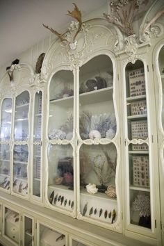 article about Cabinet of Curiosities of Bonnier de la Mosson, Library of the Museum of Natural History, Paris (on the Morbid Anatomy blog)