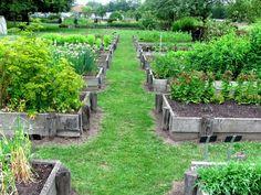 Garten-anders: Hochbeete im Klostergarten Riddagshausen