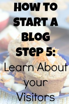 Step 5: Learn About Your Visitors - No Diets Allowed #blogging #startablog