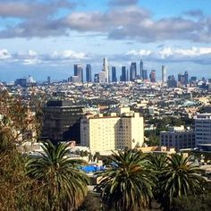 A view from Runyon Canyon hiking trails looking down at the historic Hollywood Roosevelt Hotel in Hollywood and Downtown L.A. in the distance.  #GlitteratiToursLA