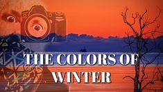 THE COLORS OF WINTER