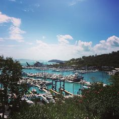 Hamilton island marina. Just stopping by en route to our yacht  #bliss #travel #instatravel #travelgram #australia #wanderlust #hashtag #sun #loveaustralia #worldtravelpics #explore #travelawesome #qld #queensland #islandlife #hamiltonisland #whitsundays #cruise