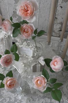 Ambridge Rose : David Austin Roses