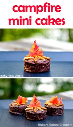 Mini Cakes (Go Camping Series Campfire Mini Cakes Here is a cute little craft to do with the kids in the kitchen or while camping or sitting around the fire pit in the backyard.Little Little is a synonym for small size and may refer to: Cute Food, Good Food, Yummy Food, Mini Cakes, Cupcake Cakes, Cup Cakes, Campfire Cupcakes, Bonfire Cake, Campfire Snacks