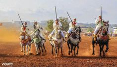 Fantasia....Morocco