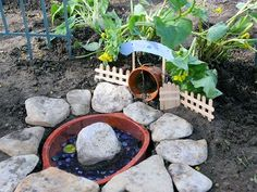 (link) Pictures of Toad Houses: approx. 19 images to view ~~~~ PICTURED: Charlene's Toad House and Pool ~ for more great PINs w/good links visit me ~ have fun! Frog House, Toad House, Small Flower Gardens, Small Flowers, Small Water Gardens, Frog Habitat, Garden Bugs, Porch Garden, Garden Animals