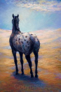 Appaloosa horse painting Giclee print in a limited numbered series  Clouds Become Me Giclee Reproduction on paper or Canvas By Janet Ferraro  This