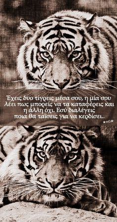 Find images and videos about greek quotes and ★mg★ on We Heart It - the app to get lost in what you love. Smart Quotes, Me Quotes, Greek Quotes, I Love Books, Animals And Pets, Find Image, Favorite Quotes, We Heart It, Meant To Be