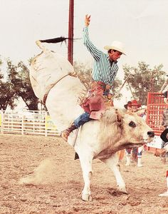Lane Frost: His legend rides on | WyomingNews.com. Picture from Wyoming Tribune Eagle newspaper on unknown bull. Published on: Saturday, Jul 19, 2014 - 11:57:44 pm MDT